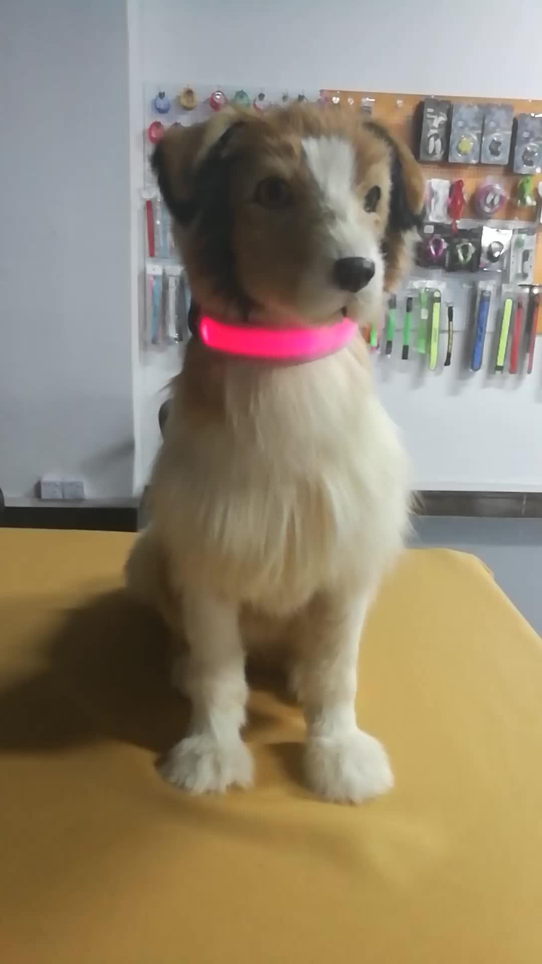 Atacado Preço de Fábrica de alta luz led Piscando coleira de cachorro