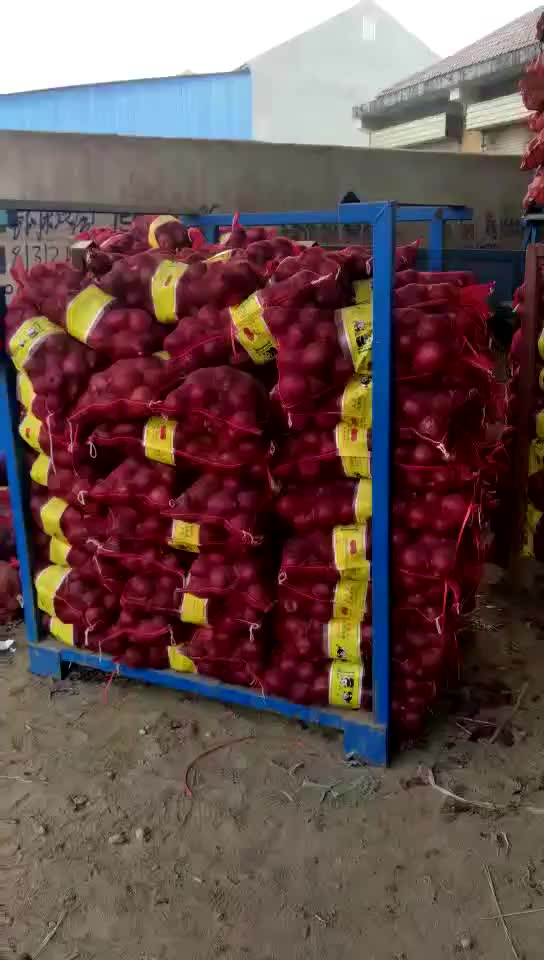 dried round wholesale Chinese Red Onion