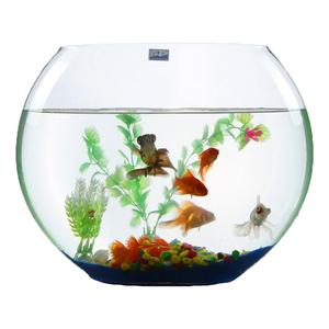 扁玻璃扁形小鱼缸客厅家用迷你缸