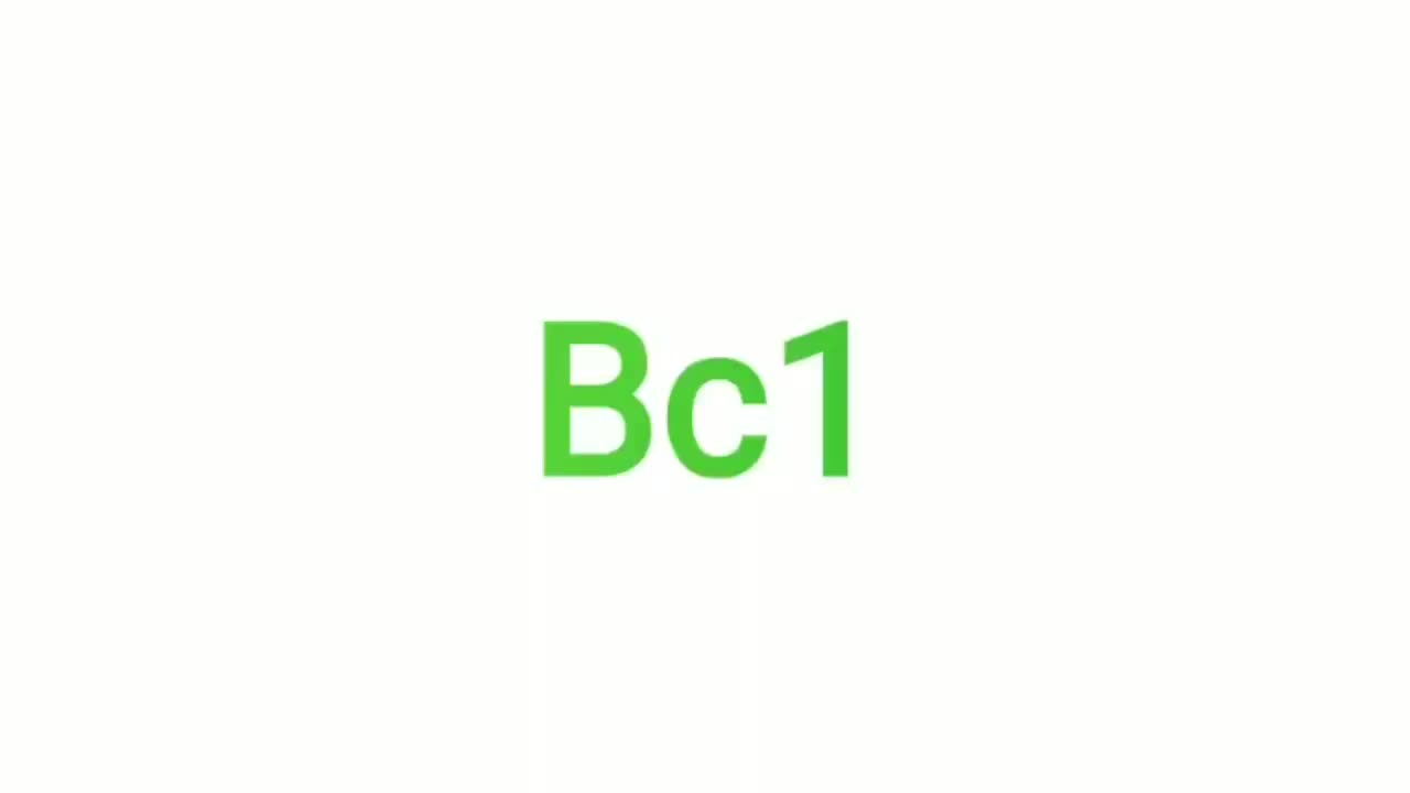 Voiture et Moto Chargeur De Batterie BC1