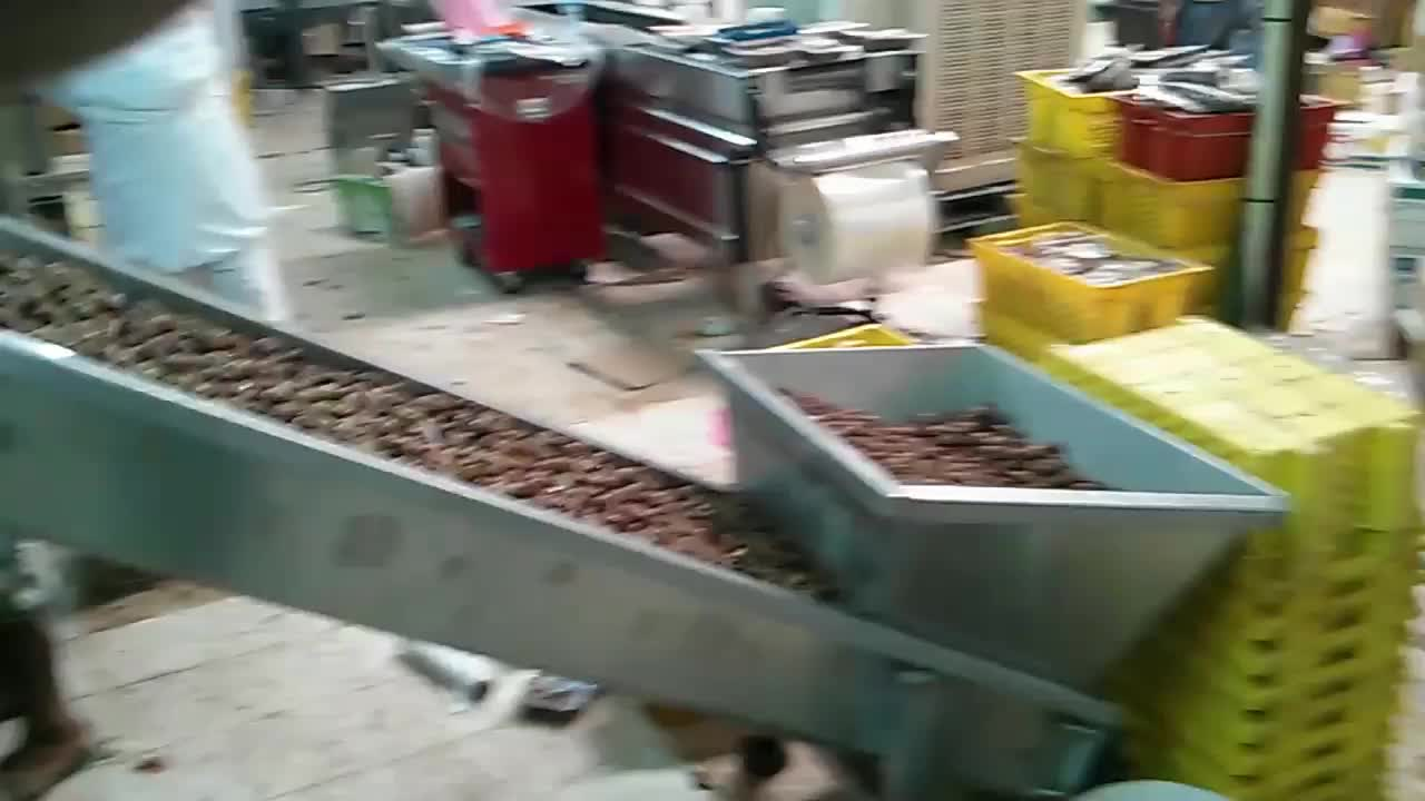 UTIEN thermoforming vacuum dates packaging machine with freshness guaranteed
