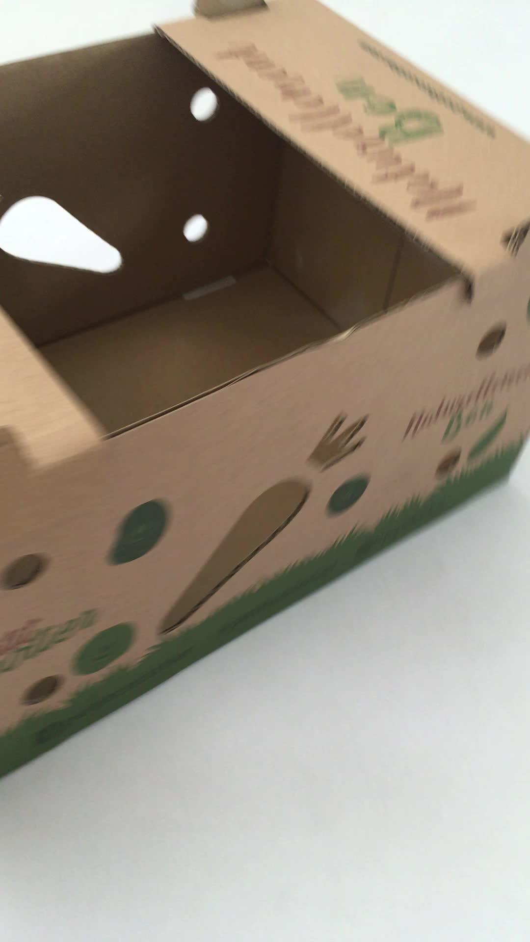 Sert Oluklu Özel Baskı Kalıp Kesim Taze Sebze Mango Muz Meyve Ambalaj Karton nakliye kutusu