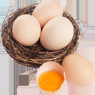 順豐包郵正宗農家土雞蛋散養新鮮雞蛋放養草雞蛋柴雞蛋笨雞蛋40枚