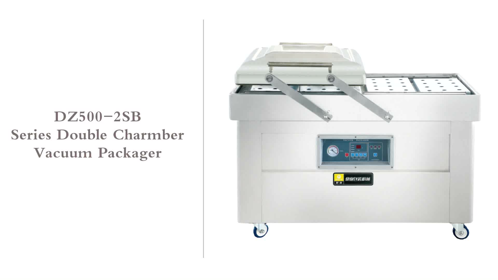 DZ600-2SB Double chamber Vacuum (Option:with gas flushing system) Packaging Machine