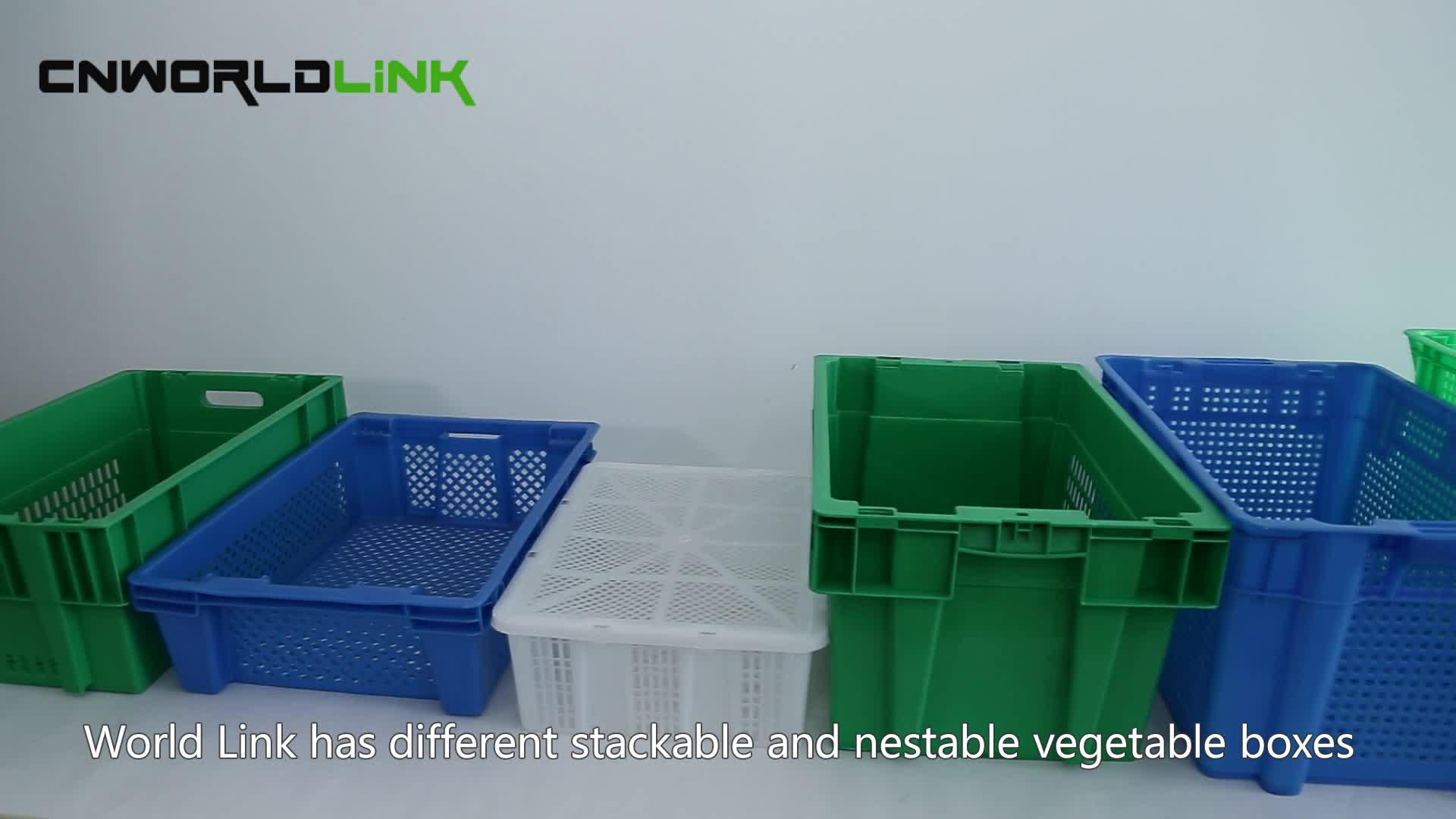 उच्च गुणवत्ता भंडारण फल और सब्जी प्लास्टिक निकाल टोकरा