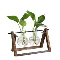 简约水培玻璃透明小花瓶水养绿萝植物花盆瓶子插花装饰  创意摆件