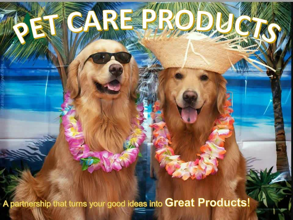 Dogs and Cats Household Shampoo