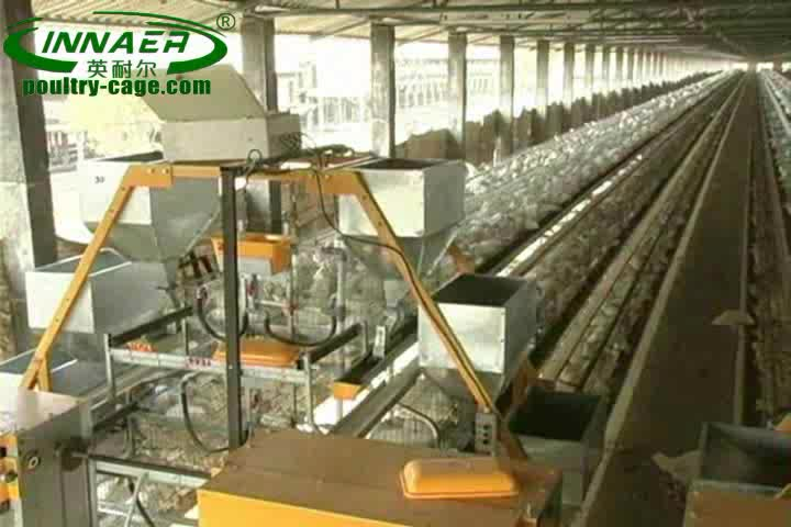 Good Price Commercial Poultry Layer Quail Farming Cages ...