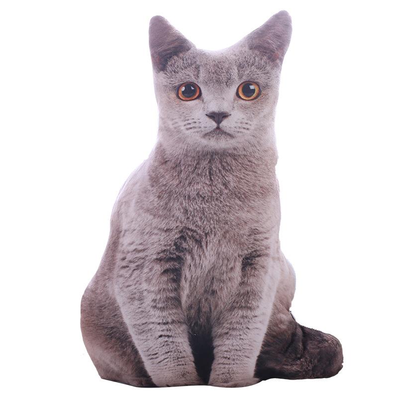 创意仿真猫咪抱枕定制大脸猫3d毛绒玩具女生搞怪玩偶娃娃可爱萌