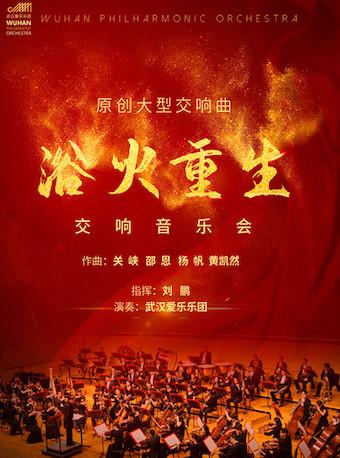 2021浴火重生武汉音乐会