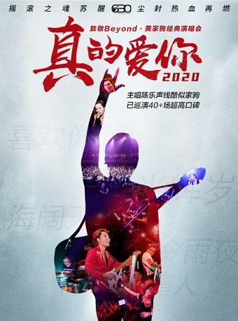 2020真的爱你-致敬BEYOND•黄家驹演唱会
