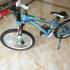 阿米尼儿童自行车20寸青少年男变速山地车铝合金小学生女赛车单车