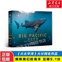 大太平洋原片同名作品豆瓣推荐鱼类大全图书海洋生物图鉴海洋鱼类图鉴海水鱼大图鉴海水鱼海洋探秘鱼什么都知道同类型书籍