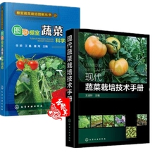 Manual of Modern Vegetable Cultivation Technology + Illustration of Vegetable Scientific Drug Use in Greenhouse 2 Books on Vegetable Cultivation Technology Guidelines for Safe Use of Plant Vegetable Growth Regulator and Maturifier Fertilizer