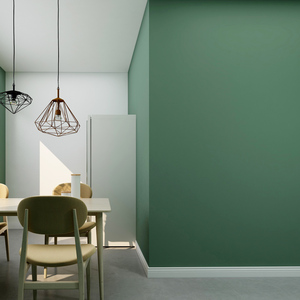 生生水性硅藻泥乳涂料室内墙面彩色替乳胶漆墙漆油漆自刷家用环保