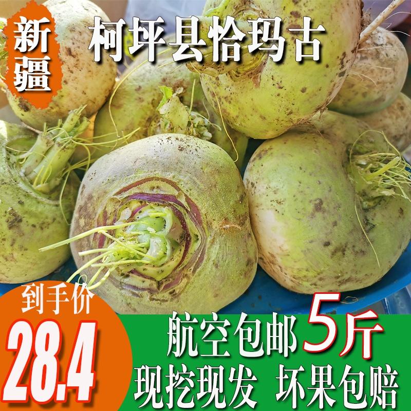 恰玛古新疆柯坪县新鲜蔬菜恰玛古强碱性食品调节酸碱平衡5斤包邮