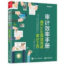 审计效率手册用Excel高效完成审计工作