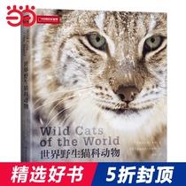 当当网正版书籍世界野生猫科动物值得收藏野生大猫家谱画册探寻野生猫科动物种群之间关联漫谈它们