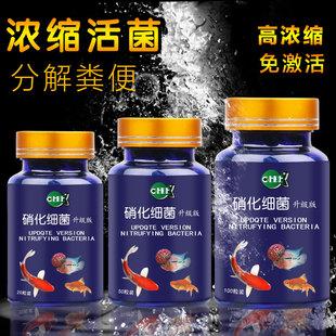 硝化细菌胶囊水族硝化活菌鱼缸净水养鱼用品超浓缩加酶硝化菌鱼药