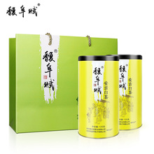 Genuine Anji White Tea in Fufu Pre-sale of New Tea in 2009 250g Rare Canned Green Tea of Super-grade Spring Tea before Rain