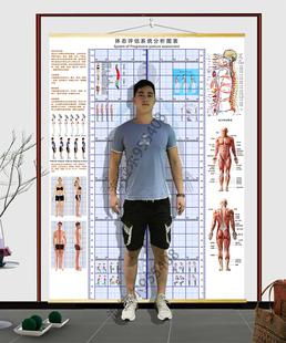 高端便携挂式体态评估表健身体测表瑜伽人体姿势YCpBJXfvok对比图图片