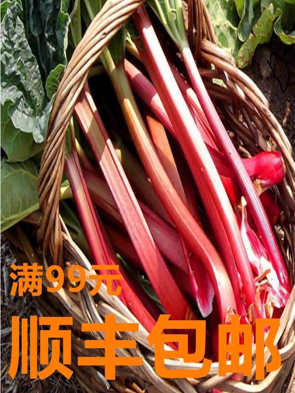 日式泰式欧美洲沙拉蔬菜Rhubarb冷冻食用大黄茎 西餐甜品果酱食材