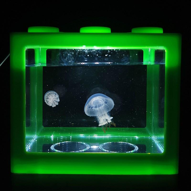 Дополнительные товары для аквариума Артикул 625888693469
