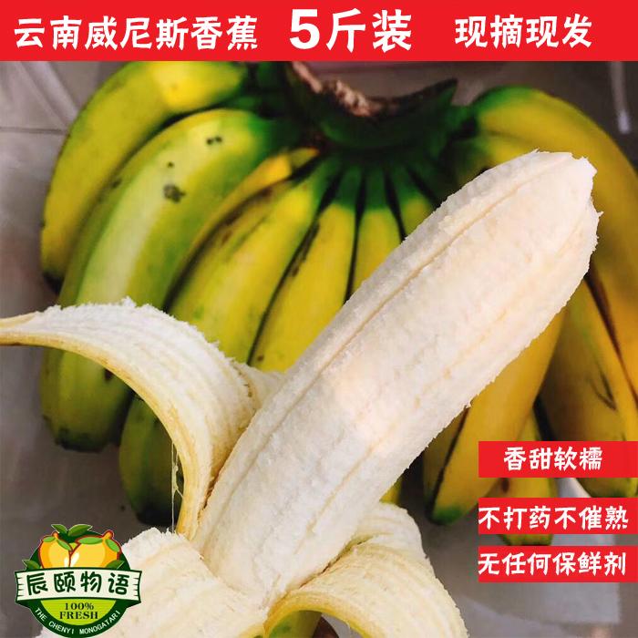 辰颐物语威尼斯香蕉5斤新鲜自然熟香蕉热带水果农家包邮颐和果园