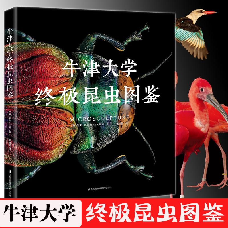 Внутриигровые ресурсы Perfect World International Edition Артикул 602075106946
