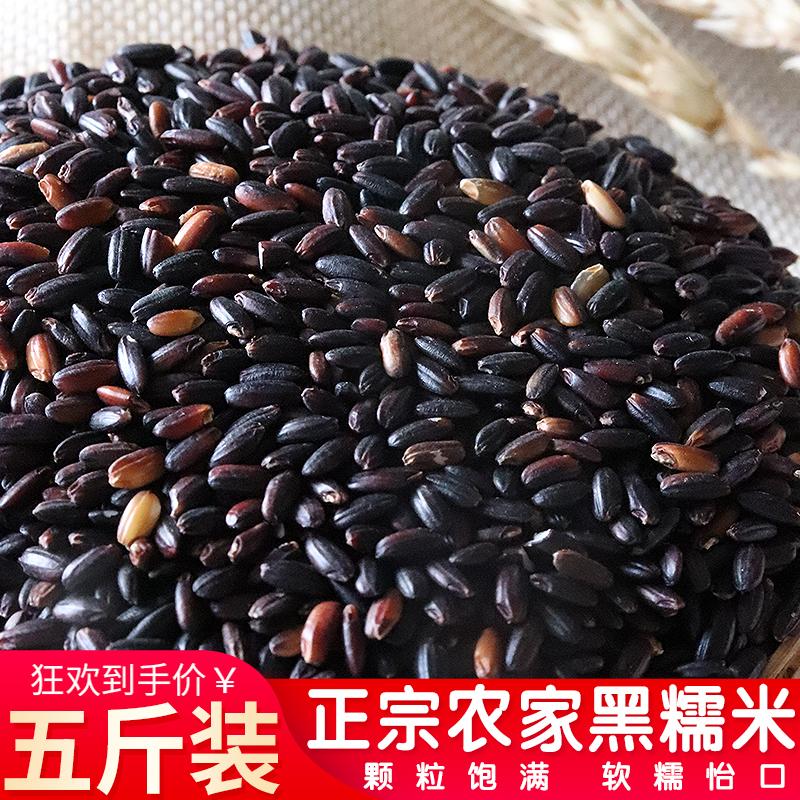 黑龙江东北黑糯米5斤 血糯米新米农家自产粘米黑米粥黑香米紫米乌