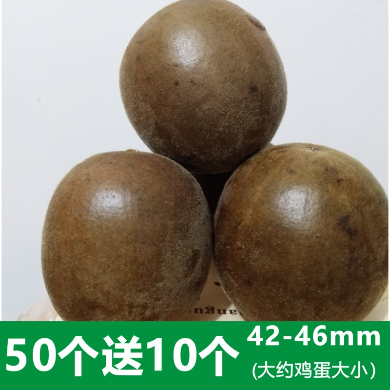 正宗广西罗汉果干果散装野生小果60个1斤新果特级果茶促销包邮