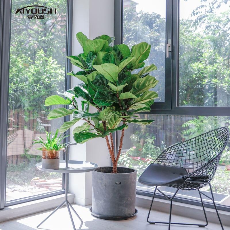 爱优尚琴叶榕盆栽大型绿植室内办公室内北欧植物客厅大叶花盆盆景