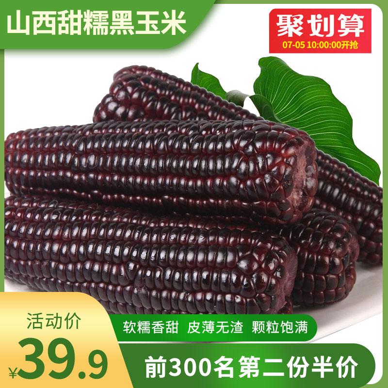 新鲜黑糯玉米220gx8根山西黑玉米