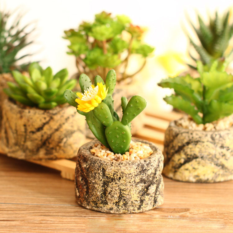 Горшки с растениями Артикул 573857171919