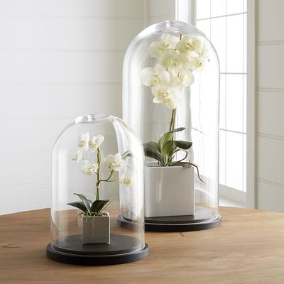 玻璃罩创意防尘罩欧美式客厅装饰摆件简约永生花微景观样板房饰品