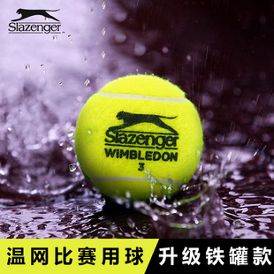 Slazenger史莱辛格网球球温网比赛用球施单人练习初学者训练球3只