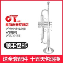 Xinghai Golden Sound JYTR-A500S weight aggravated professional Baha  I trumpet musical instrument