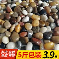查看鹅卵石雨花石原石鱼缸造景花盆栽天然小石子庭院鹅软石彩色石头价格