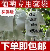 葡萄套袋葡萄袋专用袋纸袋果袋葡萄袋子全木浆白纸防水防虫包邮