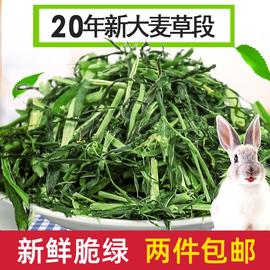 2包包邮饲料粮食大麦草段500g荷兰猪兔子龙猫豚鼠干草粗纤维图片