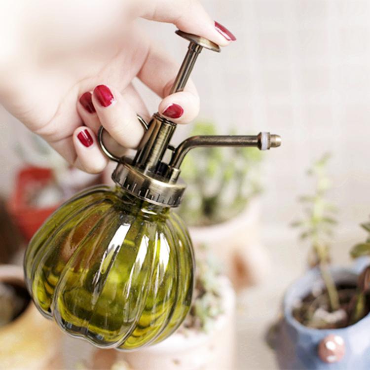 Комнатные больше мясо сад искусство атмосферное давление стиль посыпать чайник лить чайник лить цветочный горшок спрей устройство стекло ретро лейка
