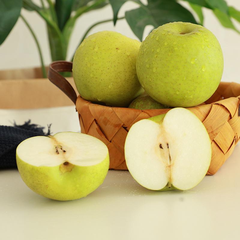 安徽砀山梨子水果当季新鲜皇冠梨青皮梨子十斤装包邮现摘现发