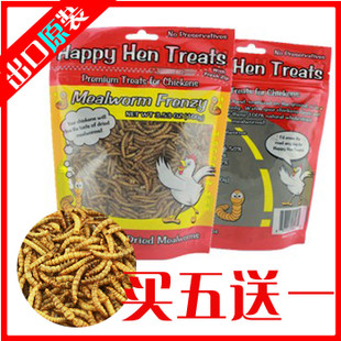 American original export dried Tenebrio Tenebrio dry pet hamster small animal climb Ichthyornis favorites 100G