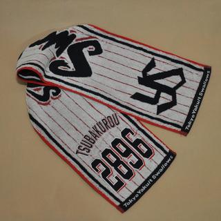 Сувениры,  Япония NPB Tokyo Yakult Swallows токио поддержка музыка больше глотать полотенце бейсбол вентилятор периферия, цена 276 руб