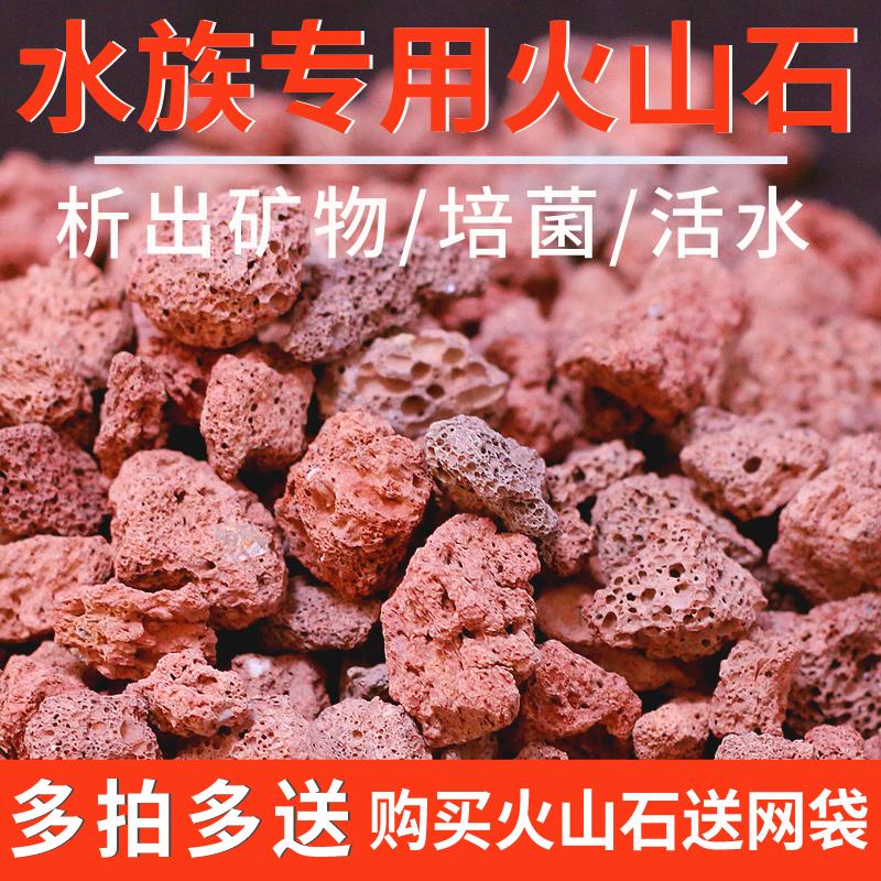 天然火山石沙火山岩滤材罗汉鱼增色鱼缸底砂水族箱过滤材料珊瑚石