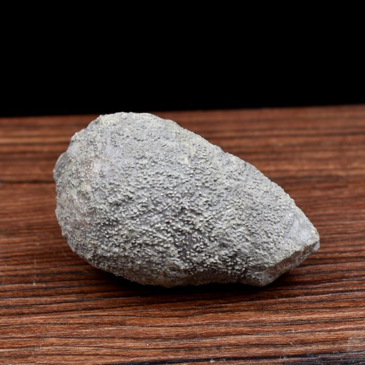 Ископаемые Артикул 613560152107