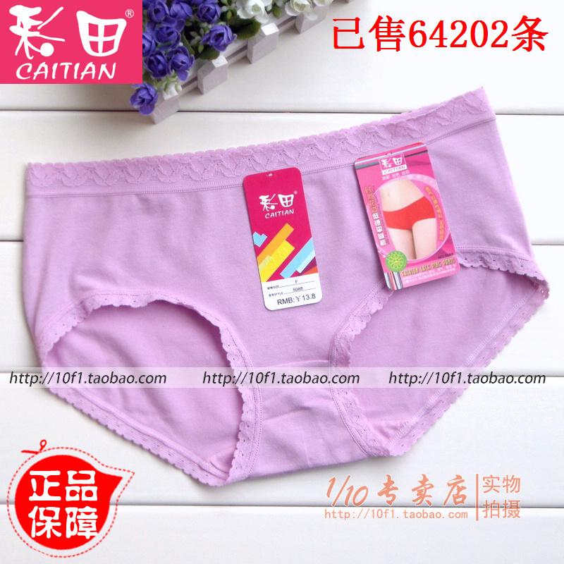 4条起包邮【正品】彩田5088 女士 纯棉透气 柔软舒适低腰平角内裤