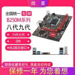 MSI/微星B250M-PRO VD ICAFE NANO B250M支持6789代M.2 VGA DDR4