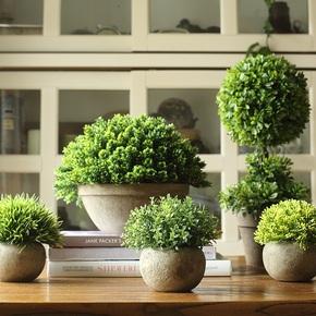 【掬涵】仿真树球盆景 咖盆 绿植盆栽 花球草球桌面餐桌装饰品