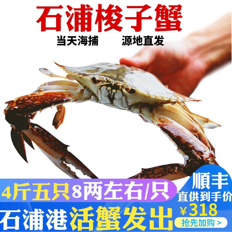 梭子蟹鲜活 4斤五个石浦特产野生大白蟹公蟹螃蟹水产海鲜顺丰免邮